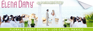 elena damy floral and event design cabo mexico
