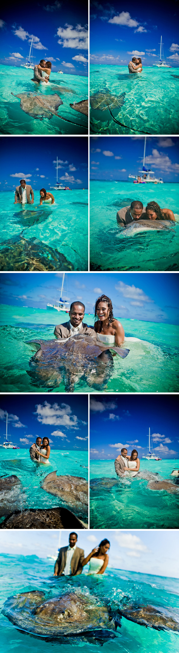 stingray city trash the dress Stingray City, Grand Cayman Trash the Dress