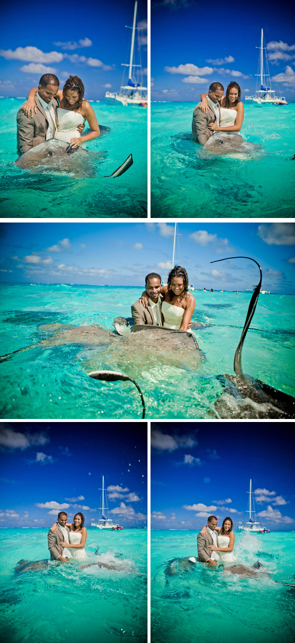 trash the dress stingray city Trash the Dress, Caymans Islands Re Run