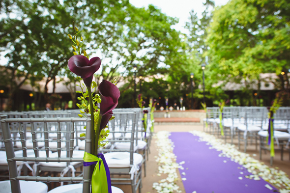 8 purple and green weddings Destination Wedding at the Biltmore Estate, Asheville, NC