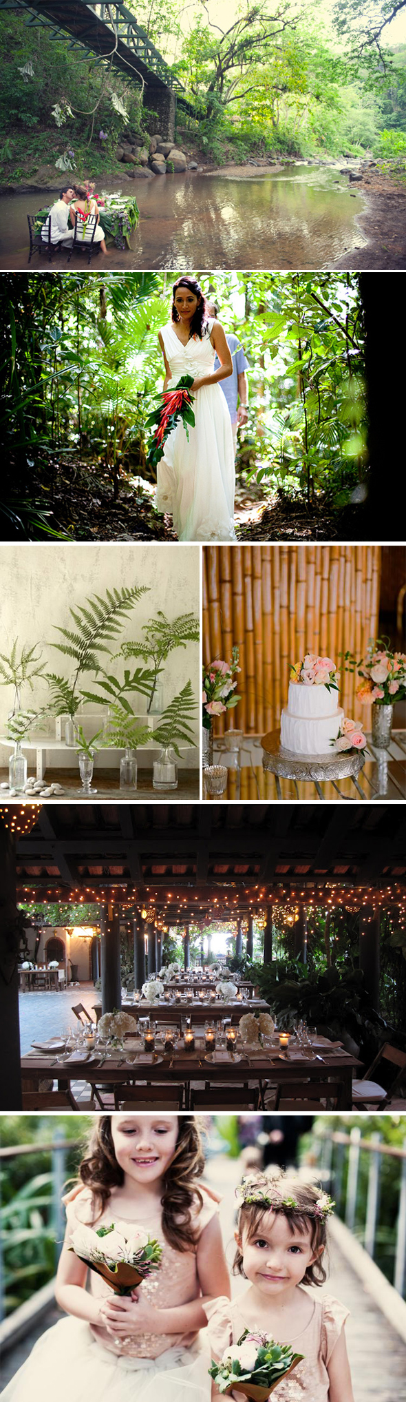 rainforest destination weddings Destination Weddings in the Rainforest