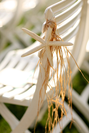 starfish wedding ideas1 Destination Wedding in Naples, Florida