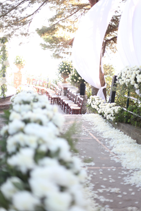 capri wedding planner