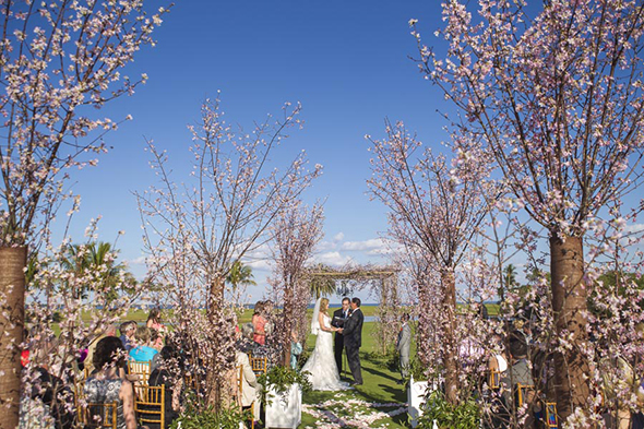 cherry blossom weddings Tented Destination I Do in Florida