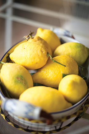 italian lemon weddings