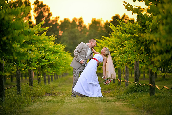 vineyard destination wedding