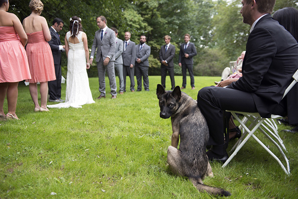 dog at wedding A Rustic Outdoor I Do in High Falls, New York