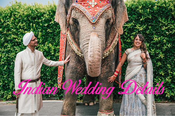 cv Indian Wedding Details