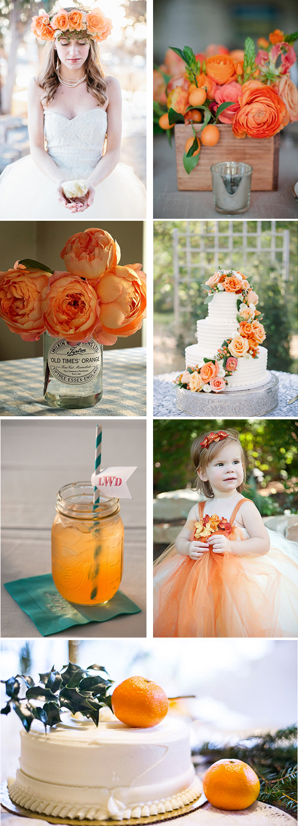 orange wedding Color Palette Inspiration: Orange