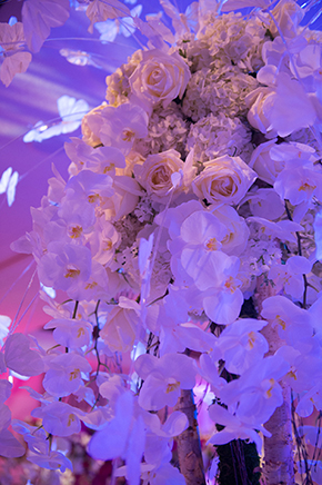 orchid weddings