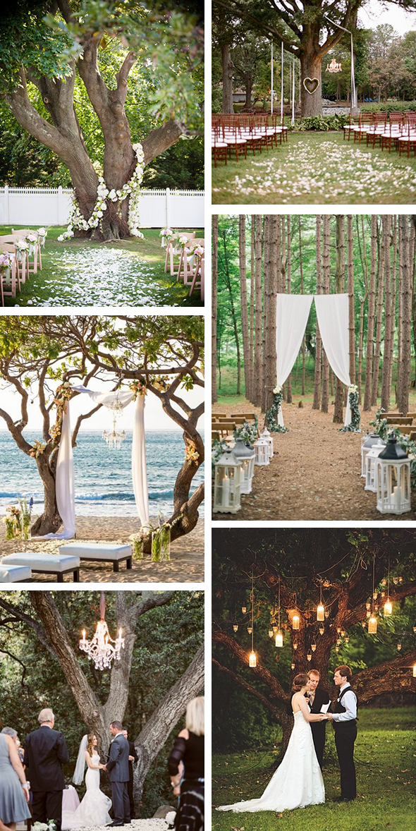 Outdoor wedding ceremony under a tree the destination for Outdoor wedding decorating ideas