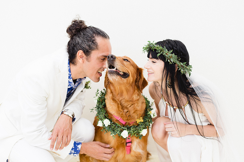 dog-friendly-weddings